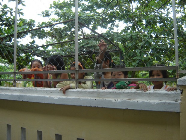 Children peer over the fence to watch while they wait for their lesson to begin